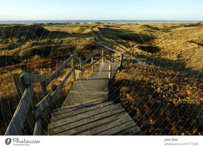 Die Treppe zu Meer Farbfoto Außenaufnahme Menschenleer Abend Schatten Starke Tiefenschärfe Vogelperspektive Natur Landschaft Himmel Herbst Gras Hügel Küste