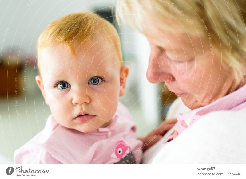 Omas Liebling Mensch feminin Baby Frau Erwachsene Weiblicher Senior Großmutter 2 0-12 Monate 45-60 Jahre tragen Umarmen Zusammensein grau rosa Zufriedenheit