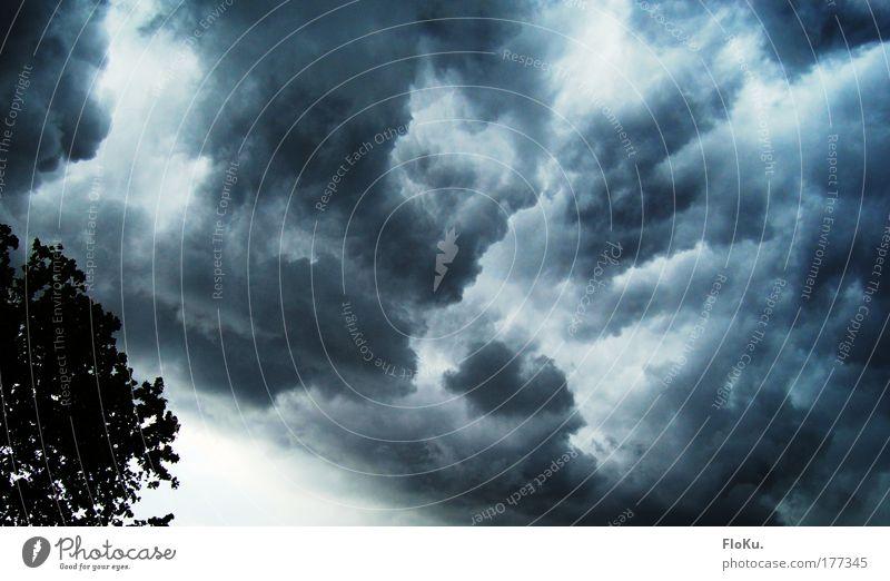 Donnerwetter! Farbfoto Außenaufnahme Abend Natur Urelemente Luft Himmel Wolken Gewitterwolken Klimawandel schlechtes Wetter Unwetter blau grau weiß