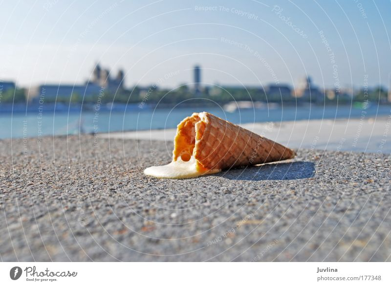 Der Sommer ist noch nicht vorbei... Farbfoto Außenaufnahme Textfreiraum links Textfreiraum unten Licht Schatten Kontrast Gegenlicht Unschärfe Lebensmittel
