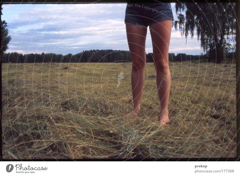 Heidi ohne Peter und Berge Mensch Frau Himmel Natur Jugendliche schön Pflanze Sommer Wolken Erwachsene Umwelt Landschaft Wiese feminin Beine Junge Frau