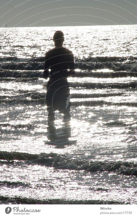 wasserspiegel Meer Belgien Gegenlicht Wasser Spiegellung Sonne