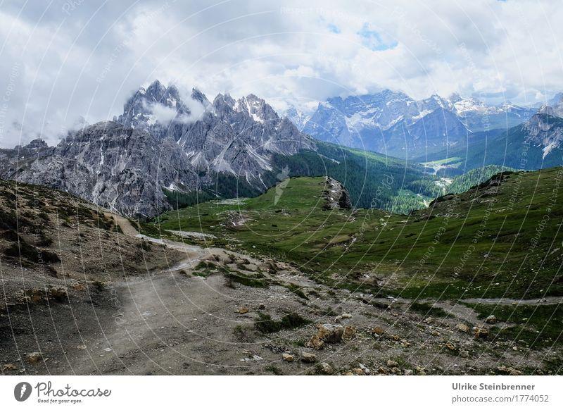 Auf bewährten Pfaden Sommer Sommerurlaub Berge u. Gebirge wandern Umwelt Natur Landschaft Pflanze Himmel Wolken schlechtes Wetter Nebel Gras Wald Felsen Alpen