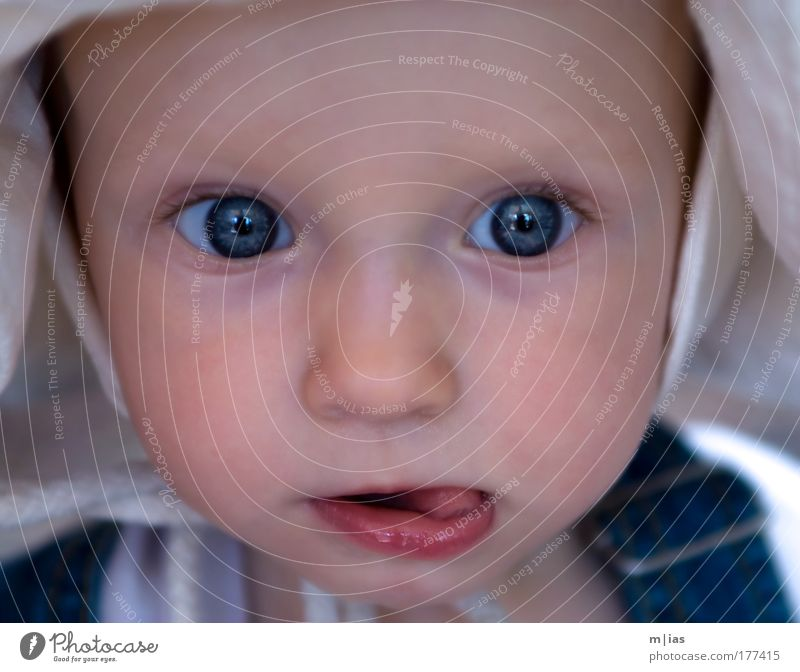 den Sommer entdecken. Kind schön Mädchen Leben Junge Kopf Glück Denken träumen Kindheit Baby glänzend beobachten Neugier Vertrauen