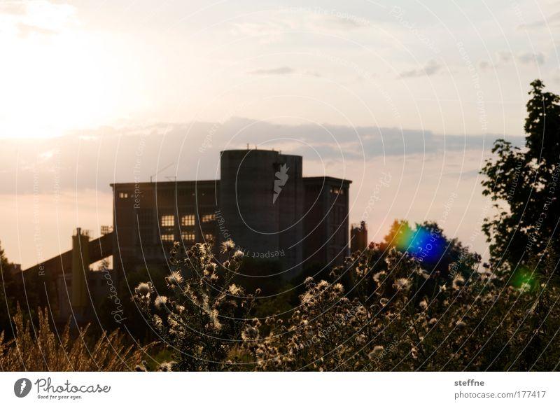 Industrieromantik schön Himmel Baum Sonne Wiese Landschaft Feld Romantik Fabrik Sträucher Schönes Wetter Industrieanlage