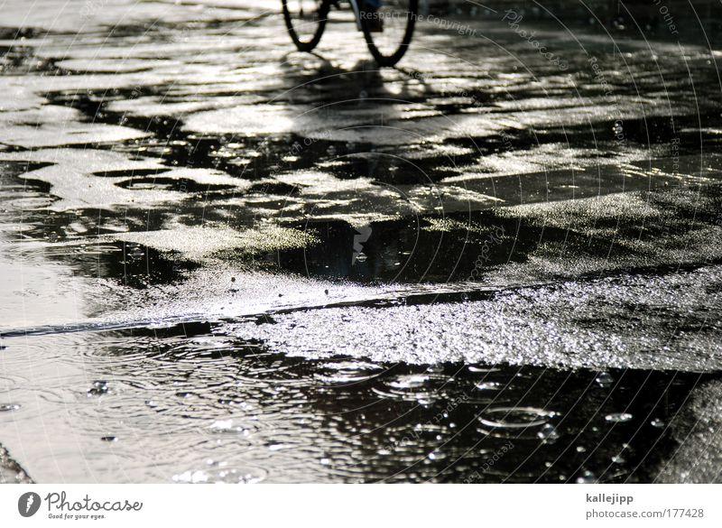 unter den linden Mensch Wasser Straße Stil Wege & Pfade Regen Fahrrad Wetter nass Verkehr Lifestyle fahren Freizeit & Hobby Verkehrswege feucht