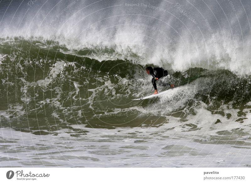 green room Mensch Mann Jugendliche Wasser grün Meer Sport Bewegung Küste Erwachsene Wellen groß ästhetisch bedrohlich nah Mut