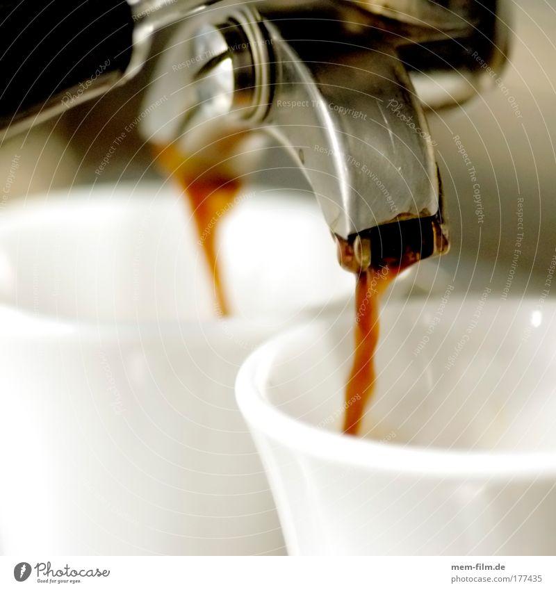 espresso 4 Café Espresso Italien Feinschmecker Lokal Kochen & Garen & Backen Kaffee Bar heiß genießen braun Wärme Koffein Gastronomie coffein Energiewirtschaft