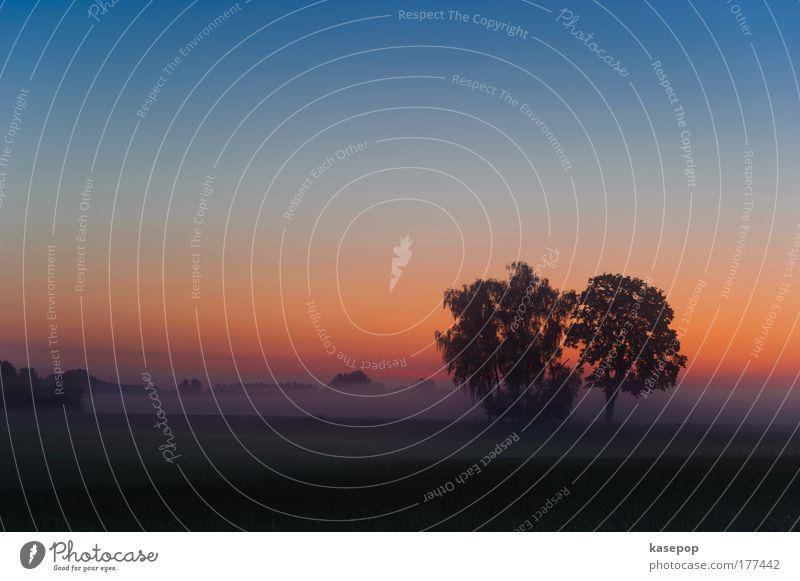 Sonnenaufgang bei Kissing (Sunrise near Kissing) Himmel Natur blau grün Baum rot Sommer gelb Leben Landschaft Gefühle Wärme Stil träumen Stimmung Zufriedenheit