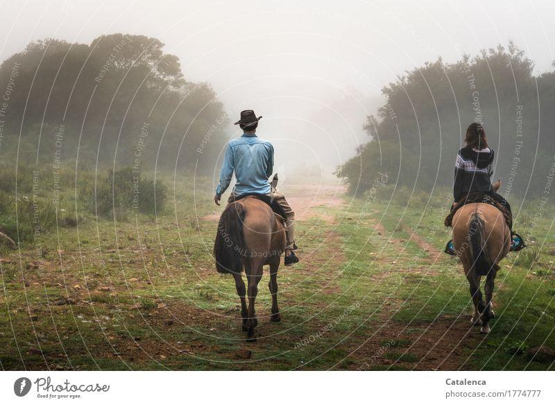 Musik | ist das Geklapper der Hufe in meinen Ohren Reiten Mensch maskulin feminin Junge Frau Jugendliche Junger Mann 2 Landschaft Wassertropfen Herbst Nebel