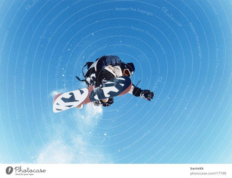 Schnee Hase Himmel blau Sport hoch