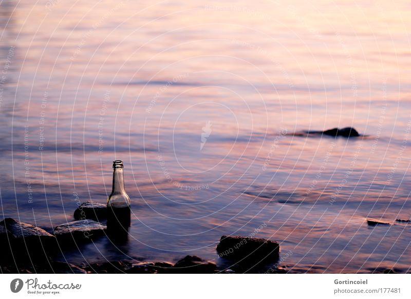 Durstlöscher Farbfoto Außenaufnahme Menschenleer Textfreiraum rechts Textfreiraum oben Abend Dämmerung Licht Schatten Sonnenaufgang Sonnenuntergang