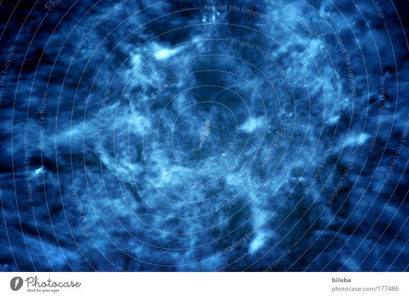 Was siehst du? Natur Wasser schön weiß blau Sommer Tier Bewegung Katze Regen Wetter frisch ästhetisch Tropfen Sturm Zeichen