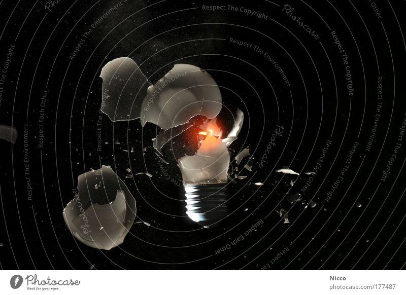 Peng! Studioaufnahme Experiment Hintergrund neutral Blitzlichtaufnahme Energiewirtschaft Glas Metall Aggression Gewalt Glühbirne Wolfram Glühdraht glühen