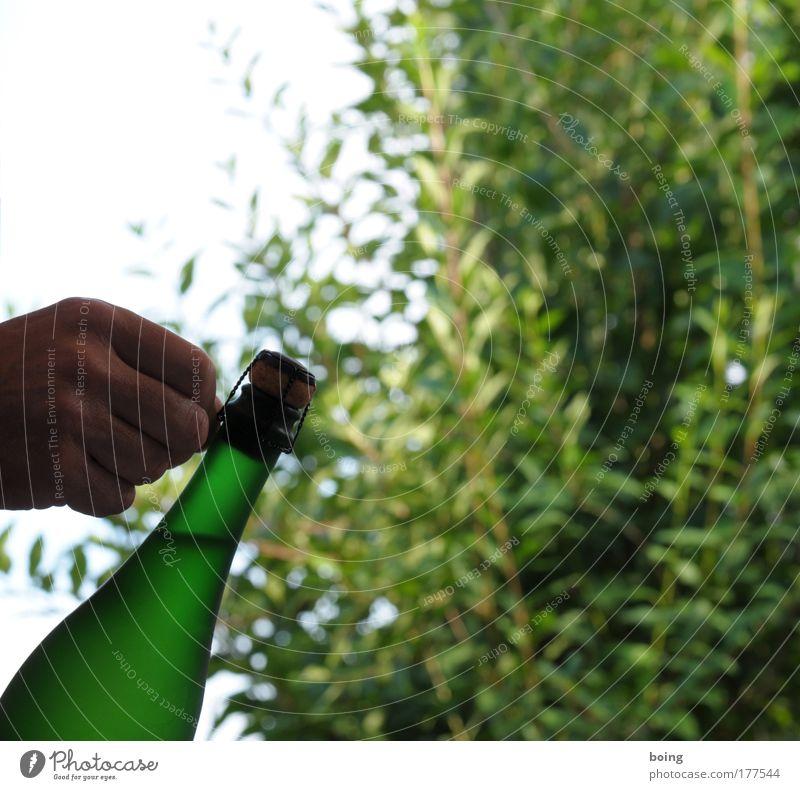 plopp Außenaufnahme Getränk trinken Sekt Prosecco Champagner Perlwein Flasche Reichtum Alkohol Garten Feste & Feiern Geburtstag Preisverleihung Champagnerdusche