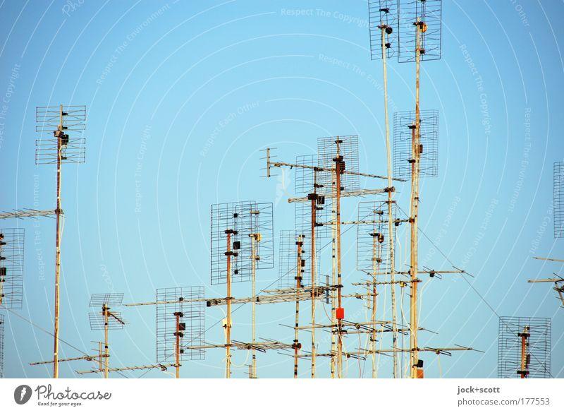Antenna blau Stadt Linie Stimmung Metall Zusammensein modern Kommunizieren Schönes Wetter einfach Warmherzigkeit Telekommunikation planen Netzwerk dünn Medien