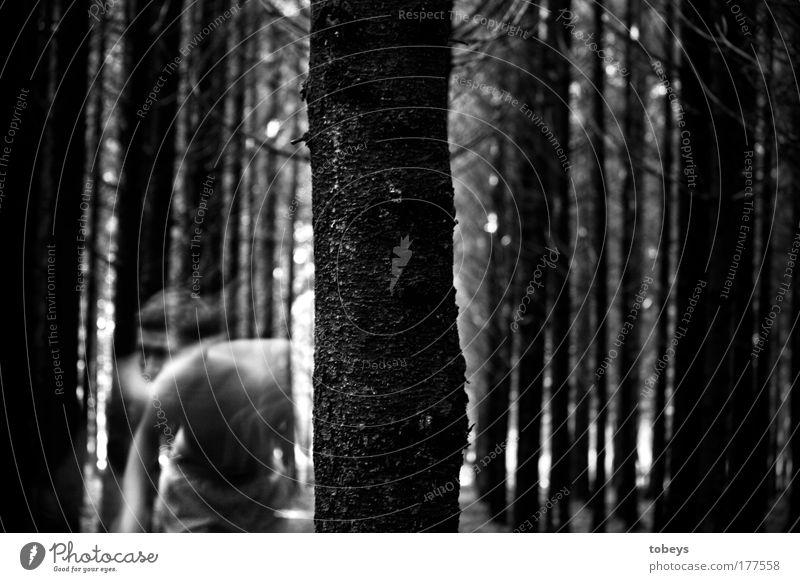 kopflos. Baum Wald dunkel Tod träumen maskulin Angst Todesangst Wut gruselig Gewalt Geister u. Gespenster bizarr Überraschung Surrealismus Frustration