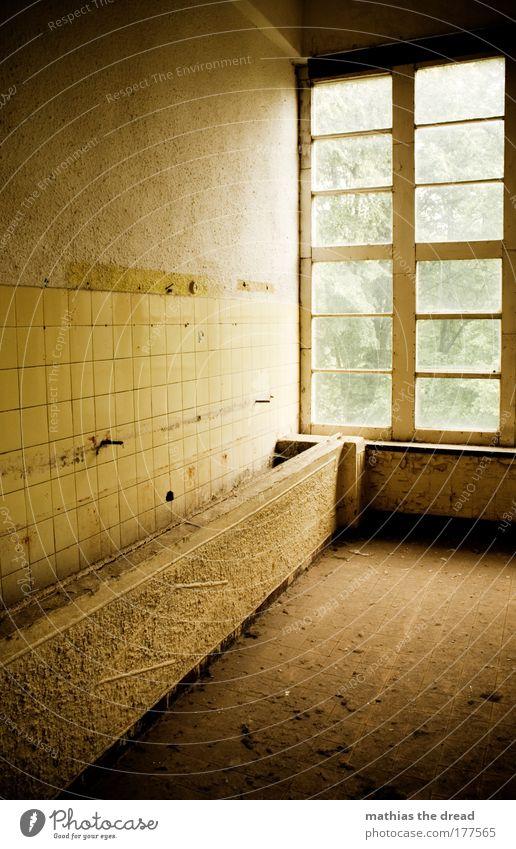 WASCHRINNE alt ruhig Einsamkeit gelb Fenster Wand Mauer Linie dreckig Fassade leer außergewöhnlich trist Idylle Fliesen u. Kacheln Ruine