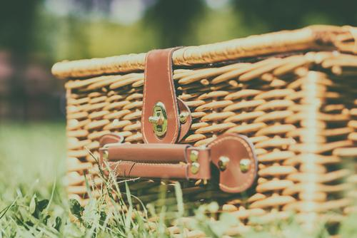 Natur Ferien & Urlaub & Reisen Pflanze Farbe Sommer grün Frühling Wiese Gras Garten braun Freizeit & Hobby Aussicht retro altehrwürdig Abendessen