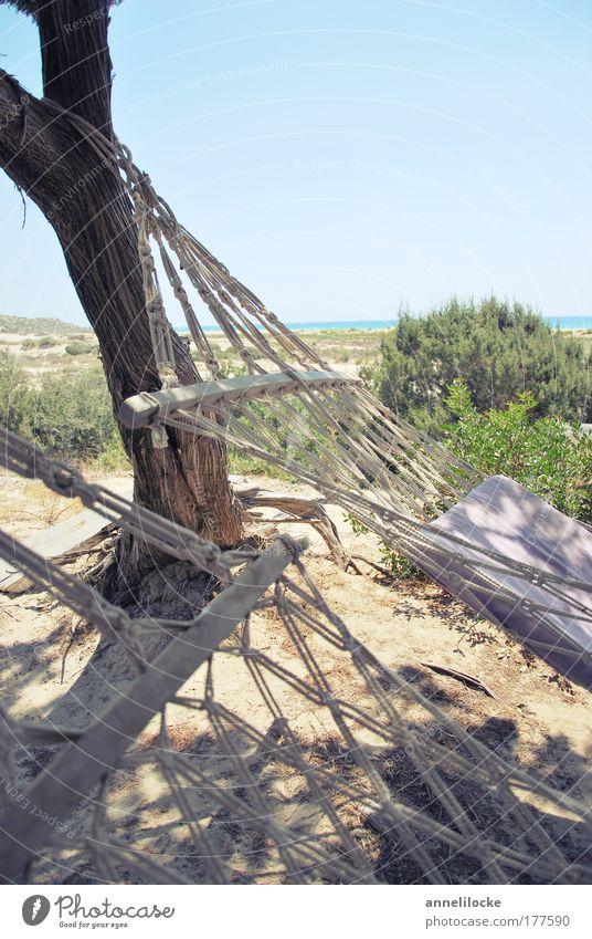 hangin' loose Himmel Natur Wasser Baum Sommer Strand Ferien & Urlaub & Reisen Meer ruhig Ferne Erholung Freiheit Holz Sand Küste Insel