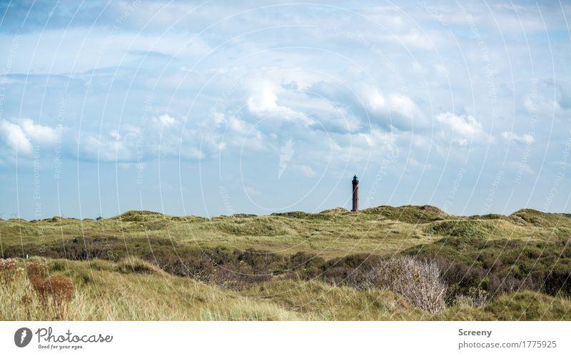 Turm in der Ferne Ferien & Urlaub & Reisen Tourismus Ausflug Sommer Sommerurlaub Natur Landschaft Himmel Wolken Schönes Wetter Pflanze Gras Sträucher Nordsee