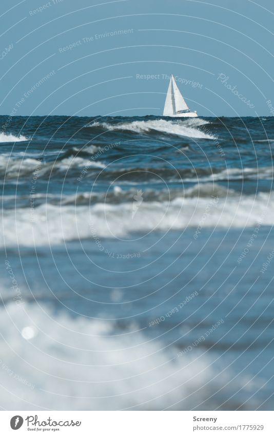 Abenteuerfahrt Freizeit & Hobby Ferien & Urlaub & Reisen Tourismus Ausflug Ferne Sommer Sommerurlaub Sonne Strand Meer Insel Wellen Natur Landschaft Wasser