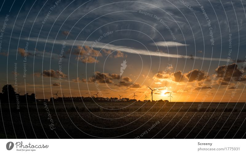 Abends, am goldenen Deich... Ferien & Urlaub & Reisen Tourismus Energiewirtschaft Windkraftanlage Landschaft Himmel Wolken Sonnenaufgang Sonnenuntergang