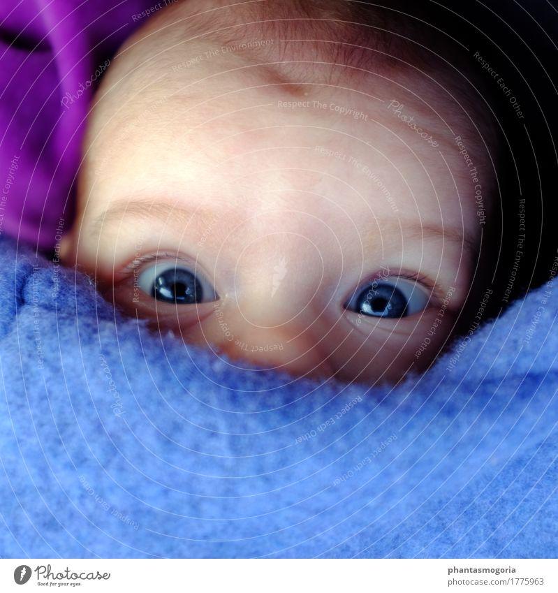 Huhu! Mensch Kind blau Mädchen Gesicht Auge lustig Bewegung Junge Spielen klein Kopf leuchten liegen Kindheit Fröhlichkeit