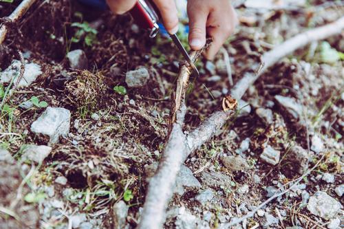 Outdoor Abenteuer mit Kinder Mensch Natur Baum Hand Umwelt Lifestyle Junge Spielen Glück Schule Feste & Feiern Freizeit & Hobby Ausflug Kindheit Geburtstag