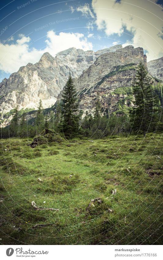 pragser wildsee Pflanze Sommer Baum Landschaft Erholung Einsamkeit ruhig Wald Berge u. Gebirge Felsen Freizeit & Hobby Zufriedenheit wandern Sträucher genießen