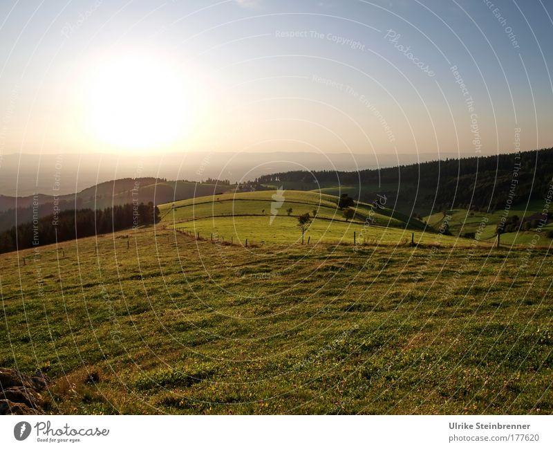 Diesen Weg auf den Höhn....[FR 15|08|09] Natur schön Himmel grün Sommer ruhig Erholung Wiese Berge u. Gebirge Schwarzwald träumen Landschaft Stimmung Feld