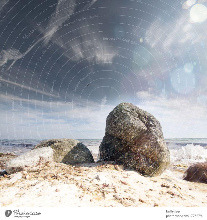 der fels in der ... Umwelt Natur Landschaft Wasser Erde Sonne Felsen Wellen Küste Meer blau Ostsee Strand Stein Dänemark Horizont Sand Sommer