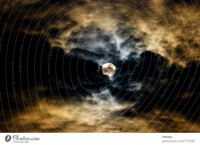 Wolfszeit Sonne Wolken dunkel Stimmung außergewöhnlich Wetter leuchten beobachten bedrohlich gruselig Sonnenaufgang Unwetter Sturm Mond Gewitter Klimawandel