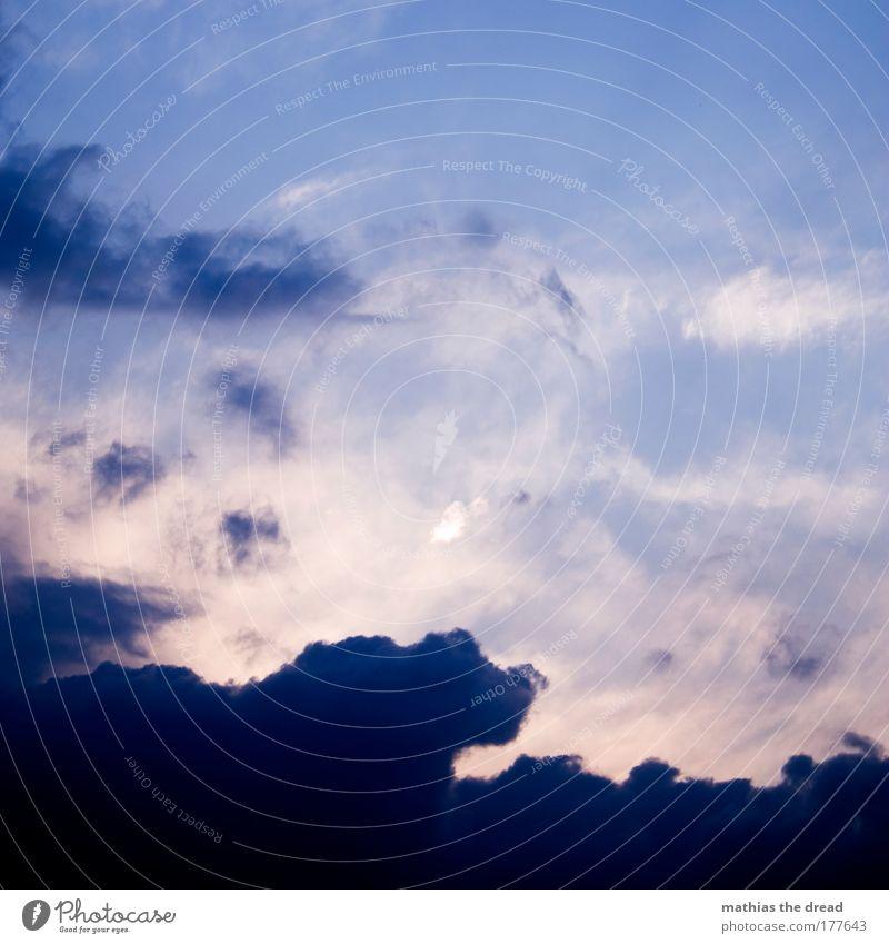 ABENDSTIMMUNG Natur schön Sonne blau Sommer Wolken Umwelt violett außergewöhnlich Schönes Wetter gigantisch Farbverlauf Wolkendecke nur Himmel