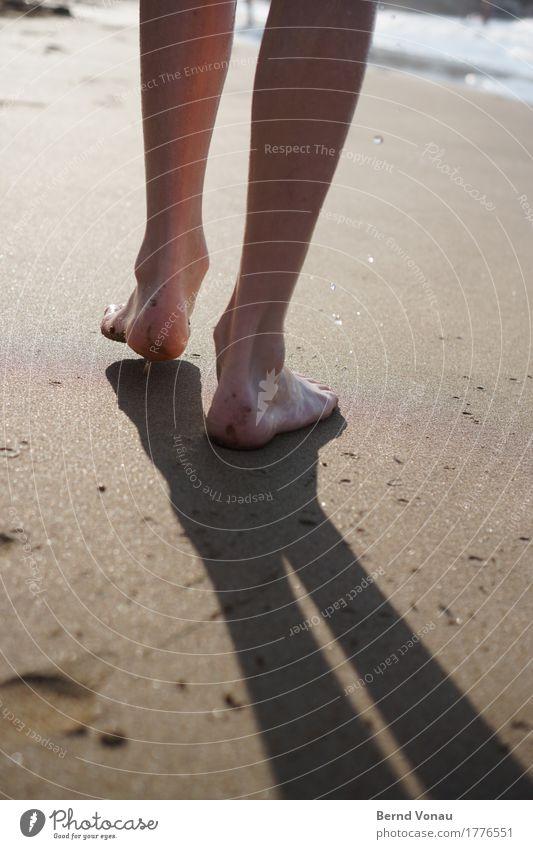 Spätausläufer Mensch Kind Ferien & Urlaub & Reisen Sommer Wasser Sonne Meer Erholung Strand Gefühle Schwimmen & Baden Fuß braun Stimmung gehen maskulin