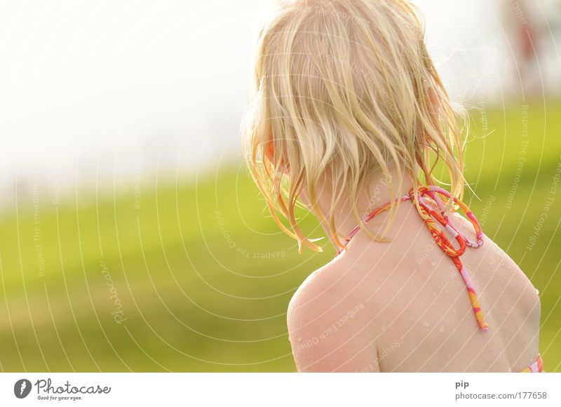 sommer Farbfoto Außenaufnahme Textfreiraum links Sonnenlicht Blick nach hinten Freude Haare & Frisuren Schwimmen & Baden Spielen Sommer Sommerurlaub Garten
