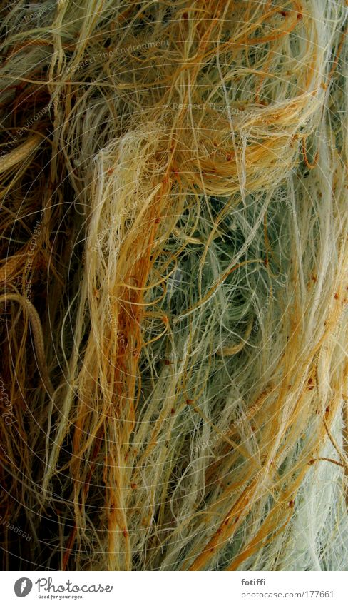 gedöns Meer nass Seil Netz wild durcheinander Knoten Fischereiwirtschaft Fischerboot Nylon gedankenlos