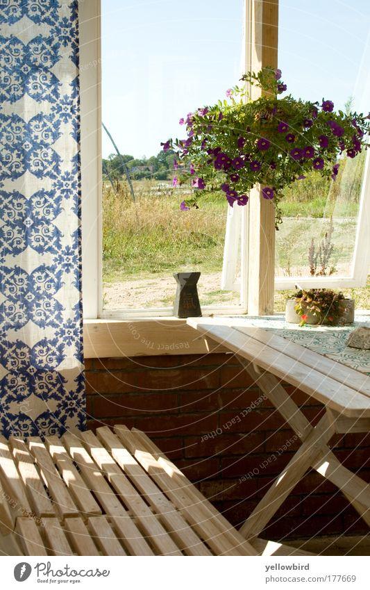 Schwedische Idylle Ferien & Urlaub & Reisen blau schön grün weiß Erholung Fenster Innenarchitektur Glück Denken Design Raum Dekoration & Verzierung Ernährung