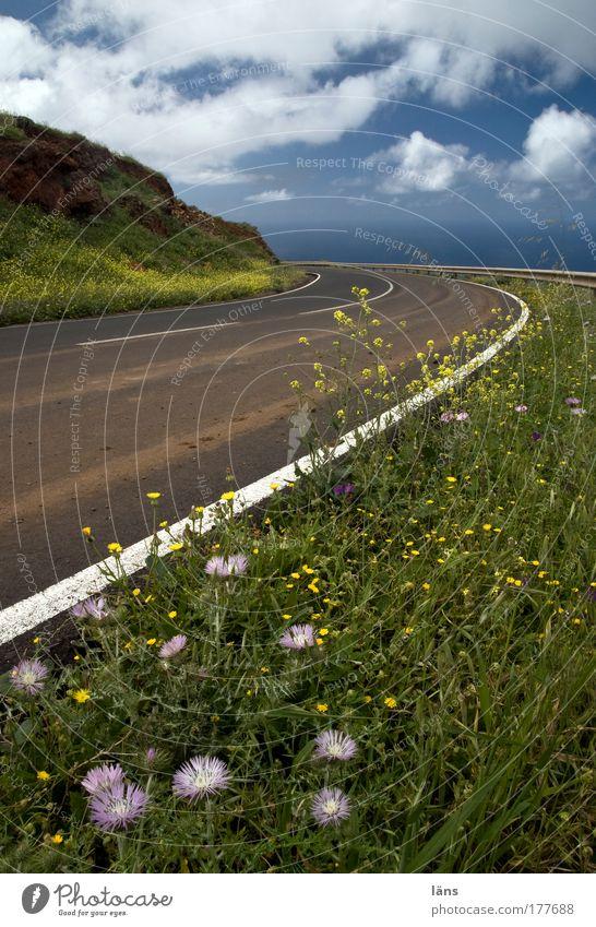 Begleitgrün Natur Himmel Pflanze Ferien & Urlaub & Reisen Wolken Straße Blüte Gras Berge u. Gebirge Frühling Landschaft Luft Linie Zufriedenheit Umwelt