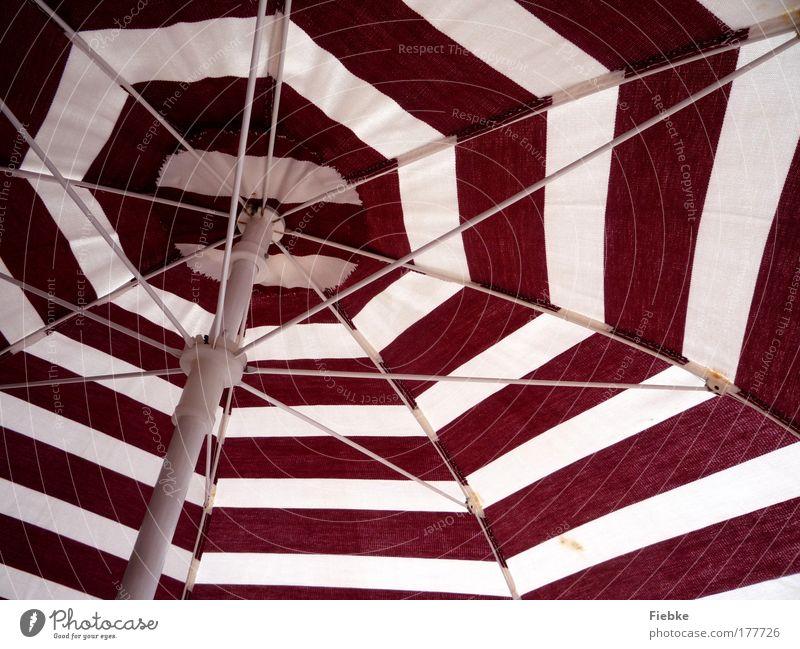 Sommer. Sonne. Strand Farbfoto mehrfarbig Außenaufnahme Detailaufnahme Muster Strukturen & Formen Textfreiraum unten Tag Ferien & Urlaub & Reisen Tourismus