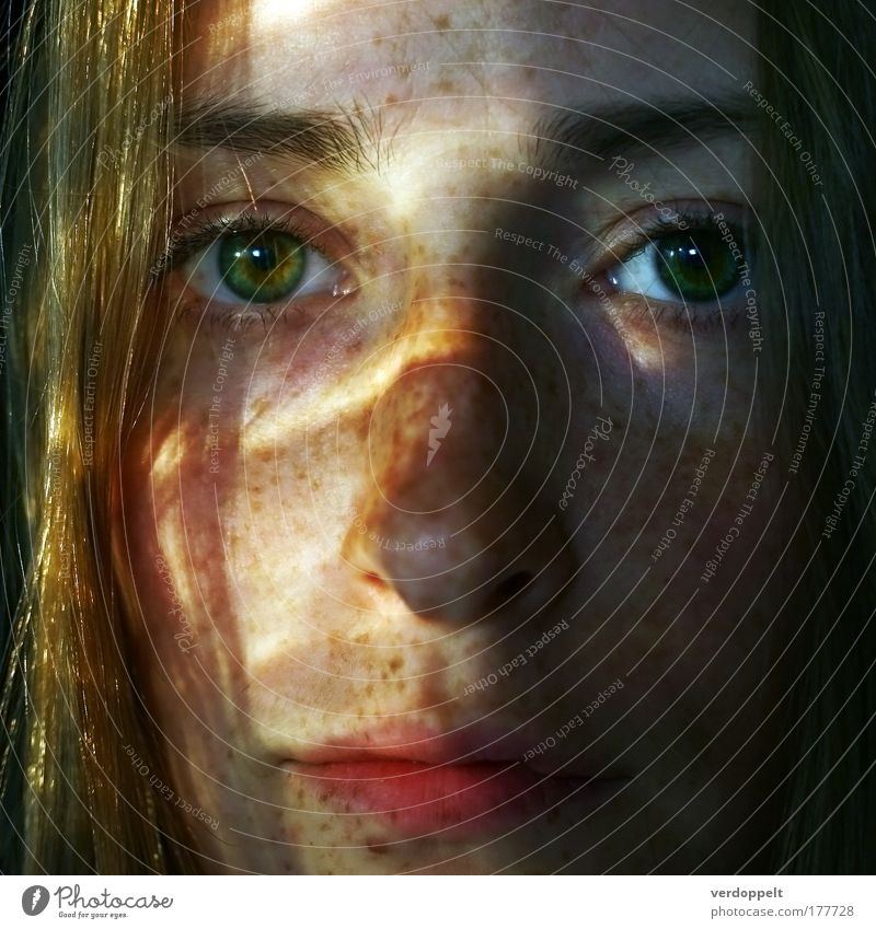 Frau Mensch Jugendliche Sonne grün Sommer Gesicht Auge Mund Beautyfotografie Lippen Schönes Wetter sommerlich