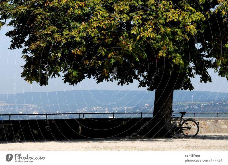 Schattenparker Baum Mauer Landschaft Fahrrad Aussicht Idylle Rad Geländer Rheinland-Pfalz Schatten Festung Koblenz