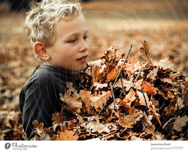 Im Herbst II Erntedankfest Junge Kindheit 1 Mensch 8-13 Jahre Umwelt Natur Blatt Park Spielen leuchten toben blond Gesundheit kuschlig Wärme Freude Fröhlichkeit