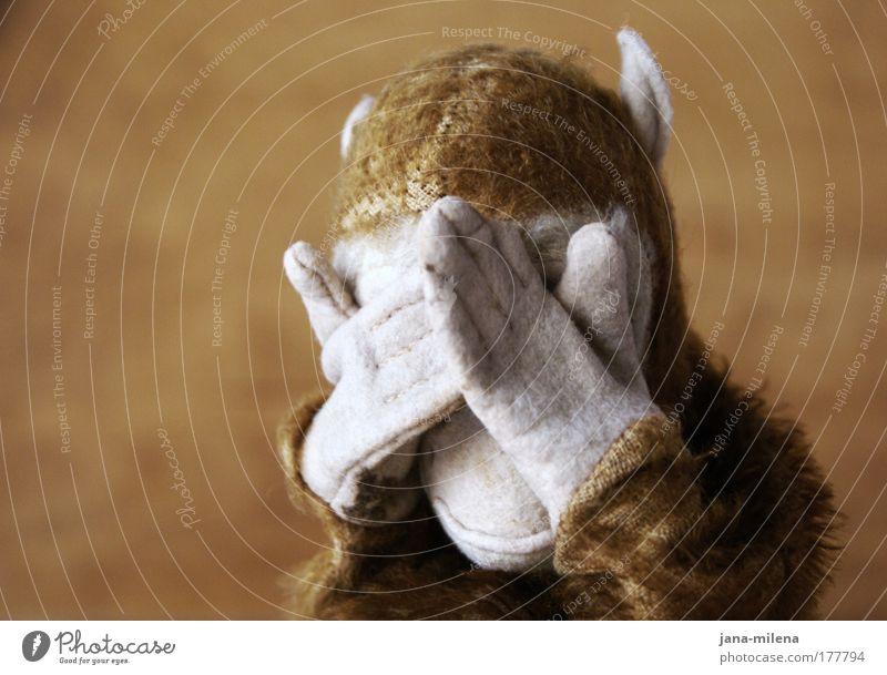 schau hin!! --- ich kann's nicht mehr sehen! Hand Tier Traurigkeit braun Angst Blick Spielzeug Gewalt Schmerz Todesangst verstecken Zukunftsangst Affen Aktion Entsetzen blind