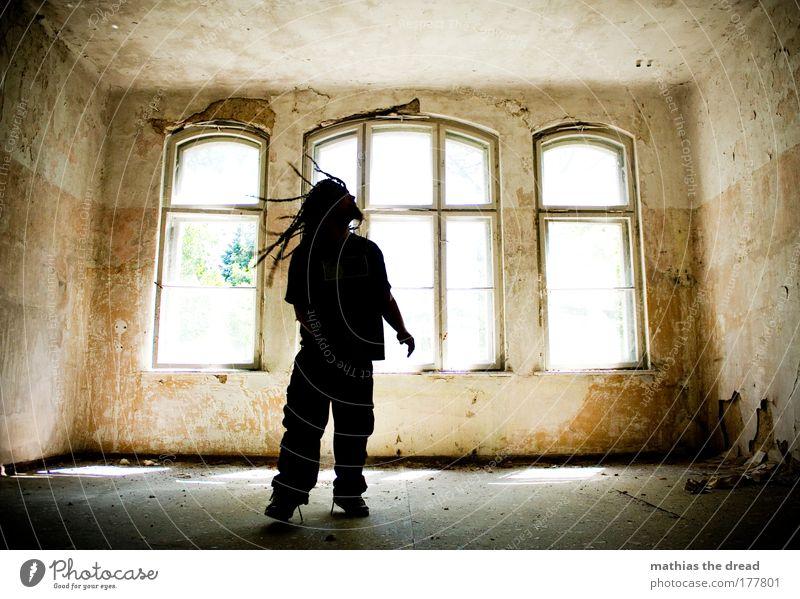 DIE EVENTUELL DOCH LÄNGSTEN HAARE ... Jugendliche alt schön Erwachsene Fenster Wand Mauer hell maskulin wild 18-30 Jahre Fabrik Idylle verfallen geheimnisvoll