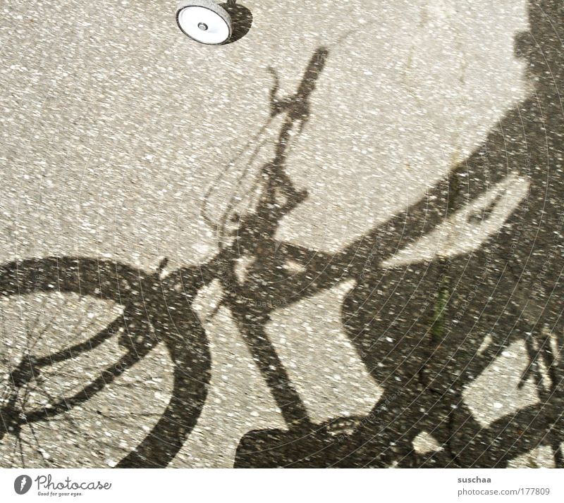 ganz lässig einen abradeln .. Gedeckte Farben Detailaufnahme Tag Licht Schatten Sonnenlicht Verkehrsmittel Fahrradfahren Straße Wege & Pfade Beton Gelassenheit