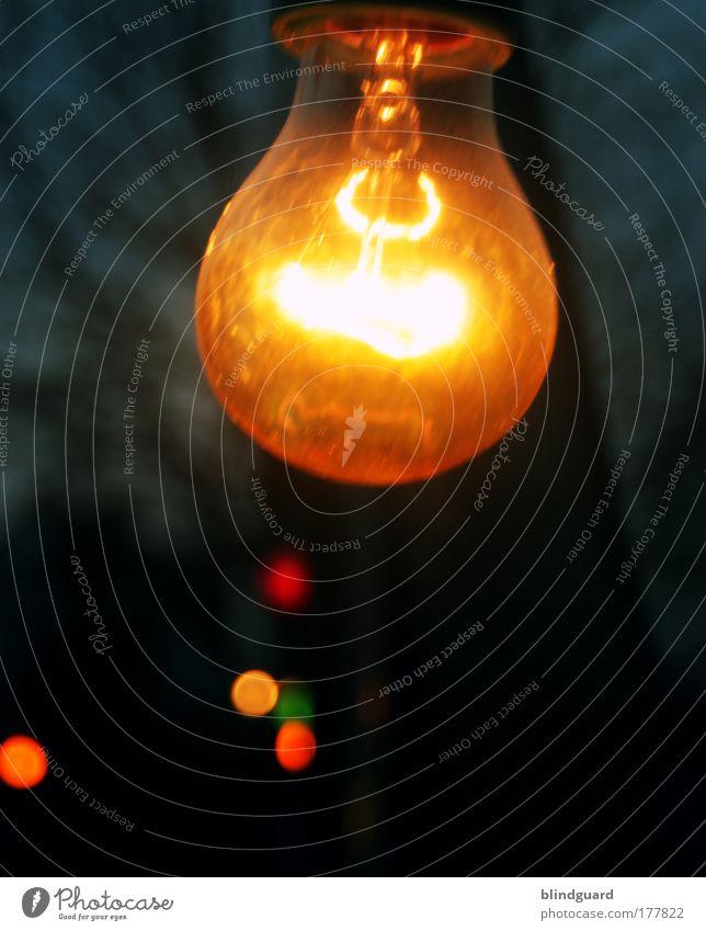 Fight For Your Right To Party grün rot Lampe Metall hell Feste & Feiern Glas gold Energiewirtschaft leuchten heiß Sonnenenergie Veranstaltung hängen Idee