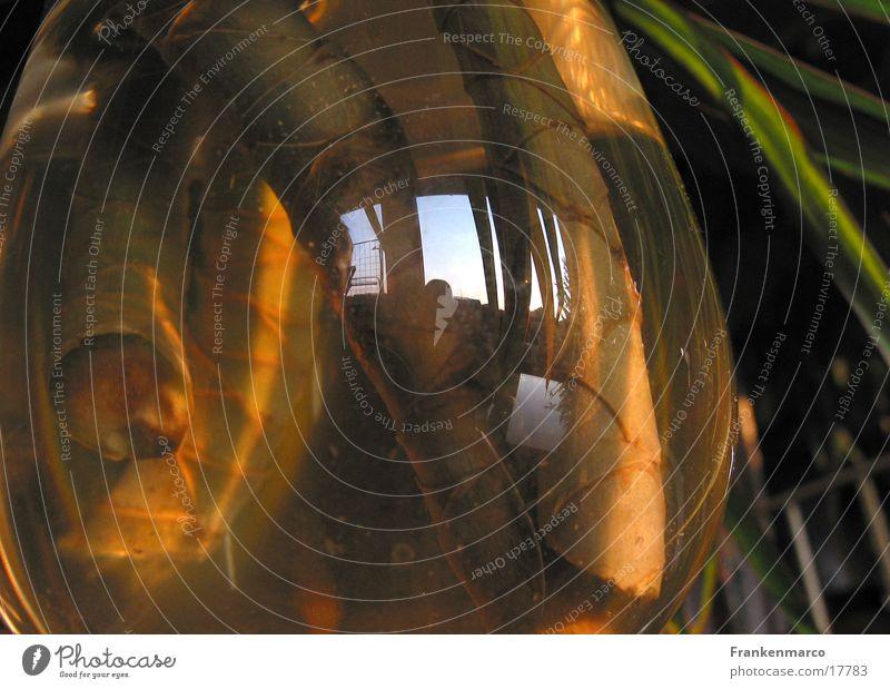 Wurzelcocktail04 Glas obskur Scheune Wurzel Tentakel