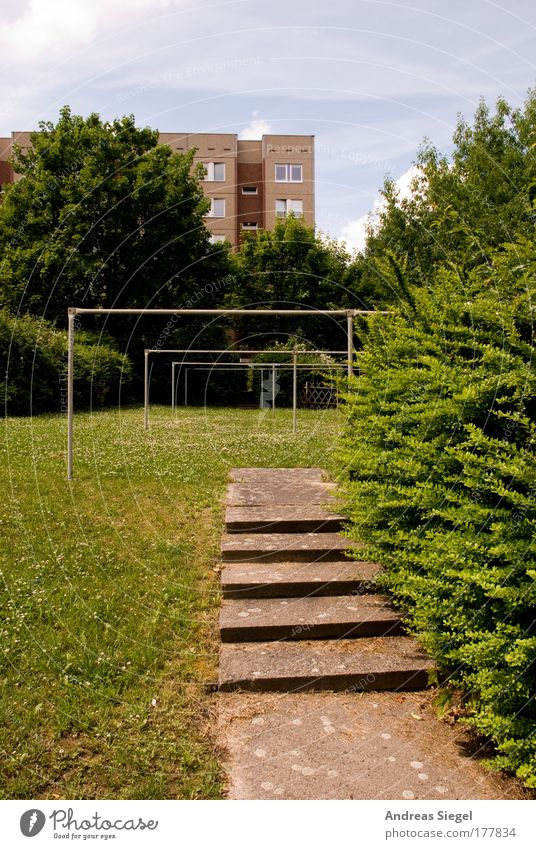 Wäscheplatz Baum grün Stadt Haus Einsamkeit Wiese Garten grau Traurigkeit Wege & Pfade braun Treppe retro trist authentisch Häusliches Leben