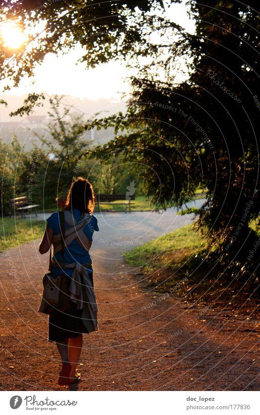 goldenSummer Mensch Natur Jugendliche Sommer Baum Pflanze ruhig Erwachsene Erholung Landschaft Umwelt Wiese feminin Leben Gras Freiheit